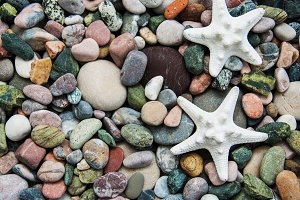 Sea pebble stones and starfish
