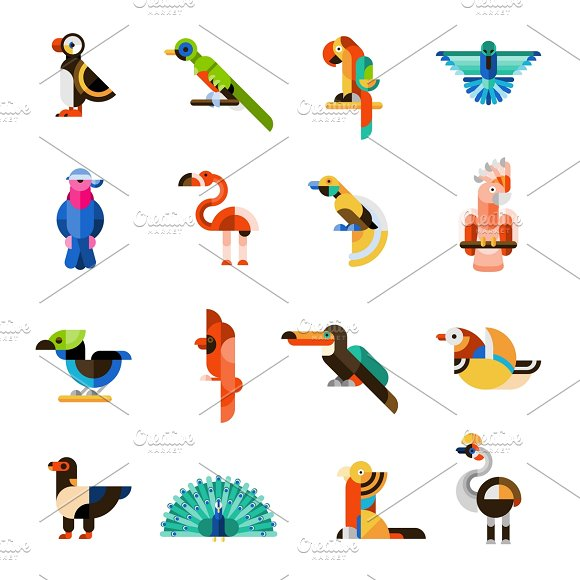 Colored Exotic Birds Icons Set