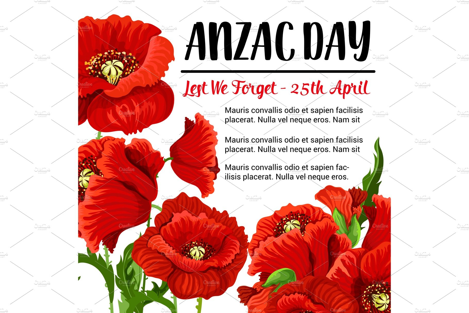Anzac Day Vector Remembrance Card Red Poppy Design Illustrations