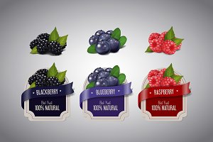 Realistic Berry labels set