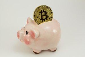 Bitcoin in a piggy box