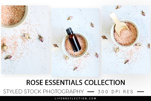 Stock Photography Rose Essentials