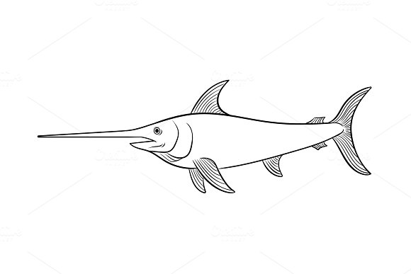 Swordfish coloring book vector illustration