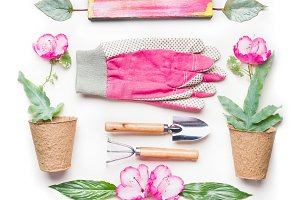 Gardening flat lay with pink flowers
