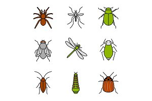 Insects color icons set