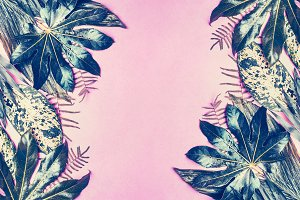 Tropical leaves frame on pastel pink