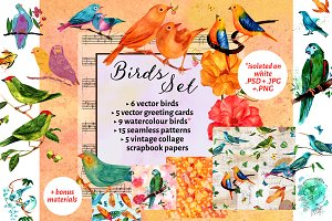 Beautiful Birds Set