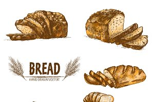 Vector bundle 5 bread set theme 1