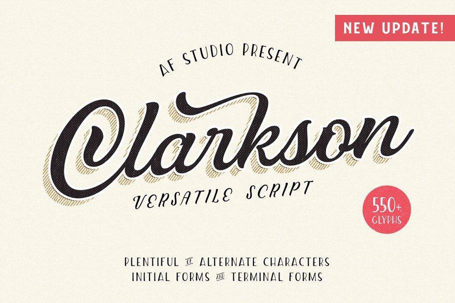 Clarkson Script ~ Script Fonts ~ Creative Market
