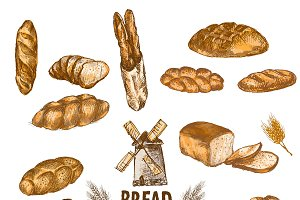 Vector bundle 10 bread set theme 3