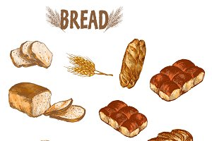 Vector bundle 5 bread set theme 4