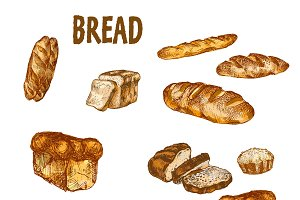 Vector bundle 10 bread se theme 6