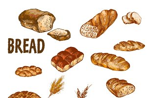 Vector bundle 10 bread set theme 7