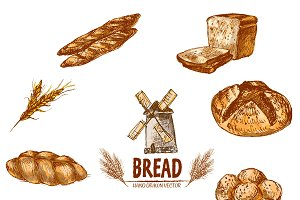 Vector bundle 10 bread set theme 8