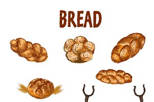 Vector bundle 10 bread set theme 10