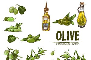 Vector bundle 15 olive oil set theme