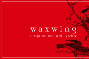 waxwing serif font