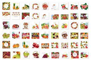 Vector bundle 63 realistic fruit set