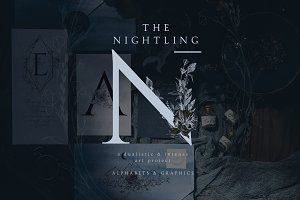 The Nightling - Art Project