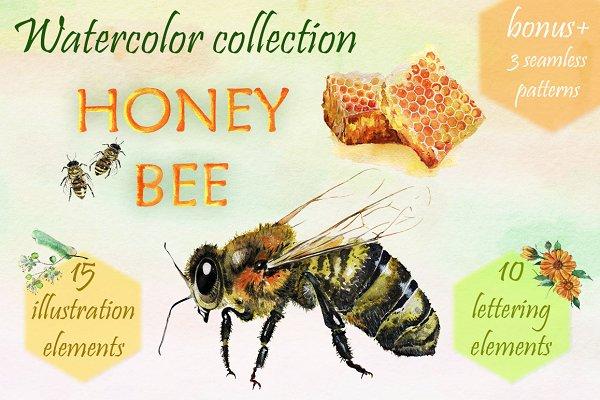 Honey Bee. Watercolor set.