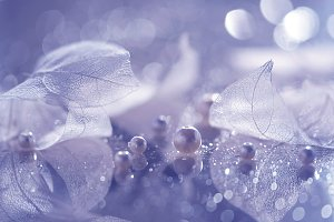 Transparent leaves and pearls
