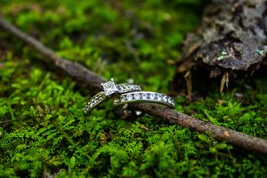 Wedding Rings in Moss