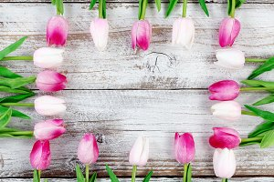 Easter Pinks on Rustic White Wood
