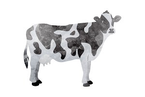 Watercolor cow on white
