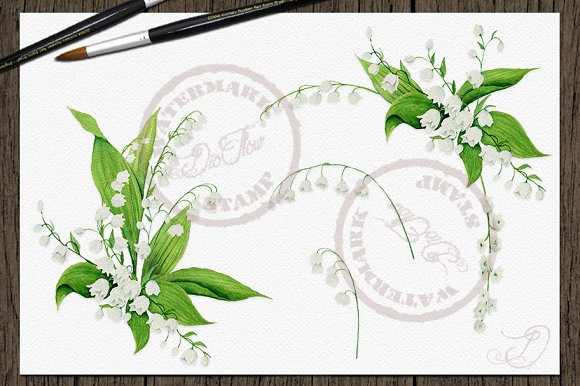 Lily Of The Valley Clip Art in Illustrations - product preview 2