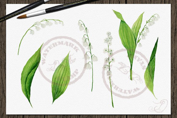 Lily Of The Valley Clip Art in Illustrations - product preview 3