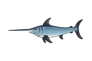 Swordfish pop art vector illustration