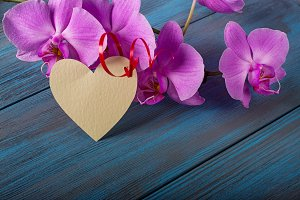 Purple Orchid and decorative heart