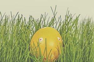 Easter egg in grass