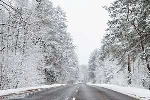 Highway in a snowy forest