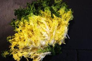 Fresh escarole for salad