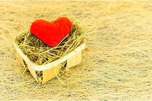 Red heart in a basket with hay. Lovely composition for Valentine's Day.