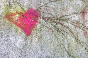 Pink heart on wall