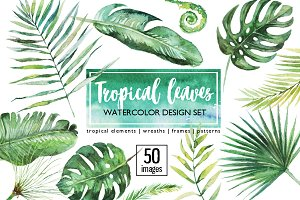 Tropical Leaves Clip Art 50 images