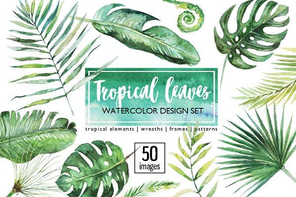Tropical Leaves Clip Art 50 images