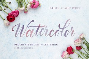 Watercolor Procreate Lettering Brush