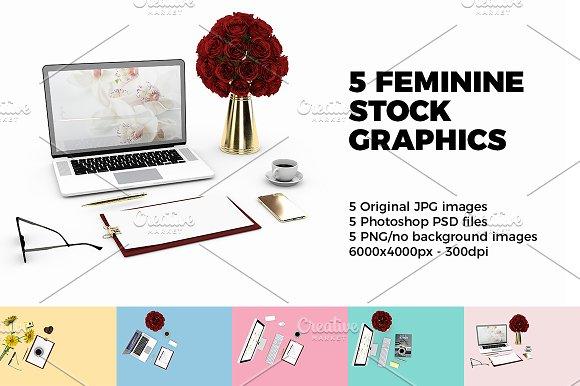 Feminine Stock Graphics v.1