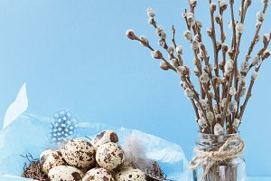 Quail eggs and willow branches