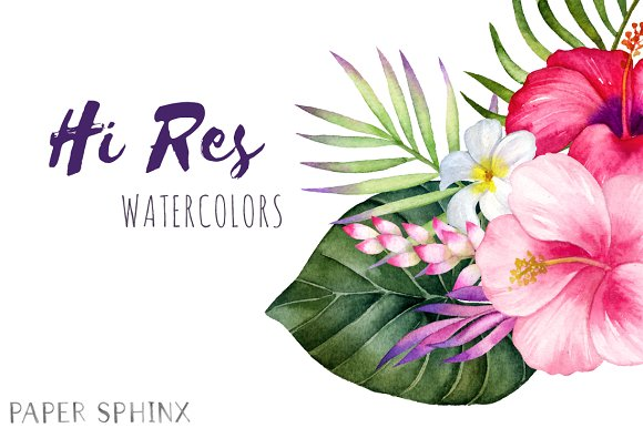 Watercolor tropical flowers clipart graphics creative market mightylinksfo Images