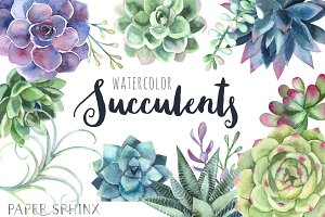 Watercolor Succulents Clipart