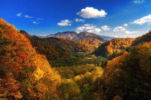 Autumn colorful mountain