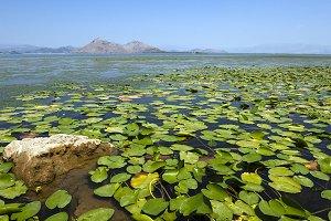 the lake. Montenegro