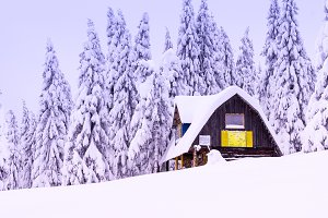 Cozy house in the forest. Forest hut