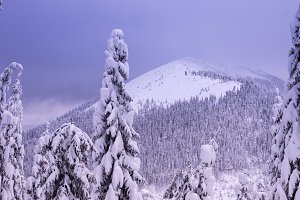 View of the snow-covered mountains w