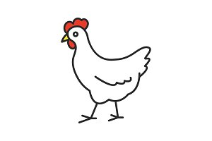 Chicken color icon