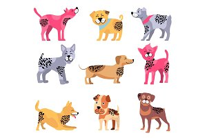Dogs of Different Breeds Icons Vector Illustration